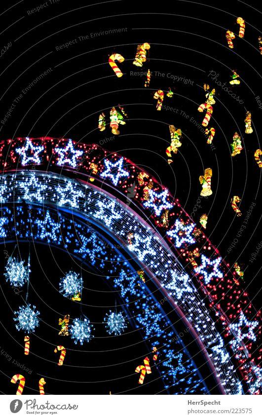 Im Weihnachtswald Weihnachten & Advent schön ästhetisch Stern (Symbol) leuchten mehrfarbig Weihnachtsdekoration Weihnachtsstern Nacht Licht Baumschmuck