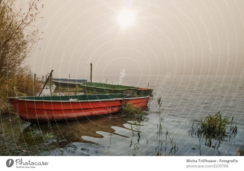 Boote am nebeligen See Natur Ferien & Urlaub & Reisen blau grün Wasser Sonne Landschaft rot Erholung ruhig gelb Umwelt natürlich orange Freizeit & Hobby