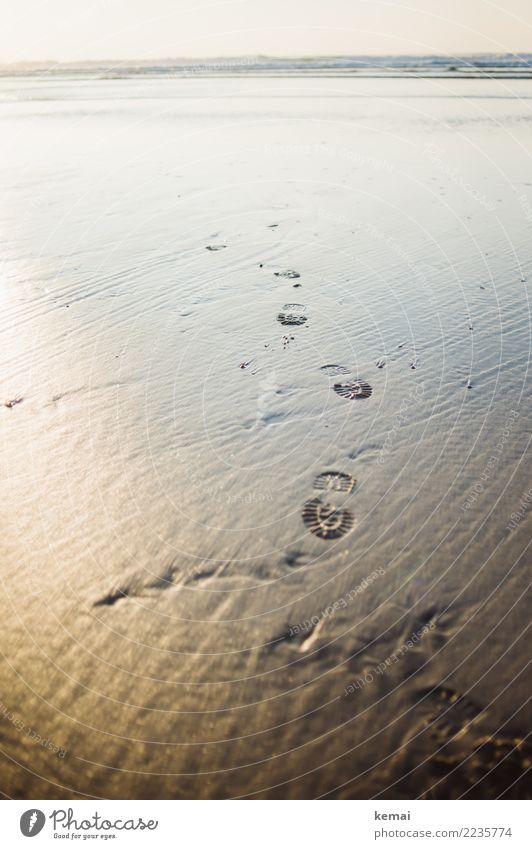 Walking on sand. Natur Ferien & Urlaub & Reisen schön Wasser Landschaft Meer Erholung ruhig Strand Wärme Leben Lifestyle Umwelt Küste Tourismus Freiheit