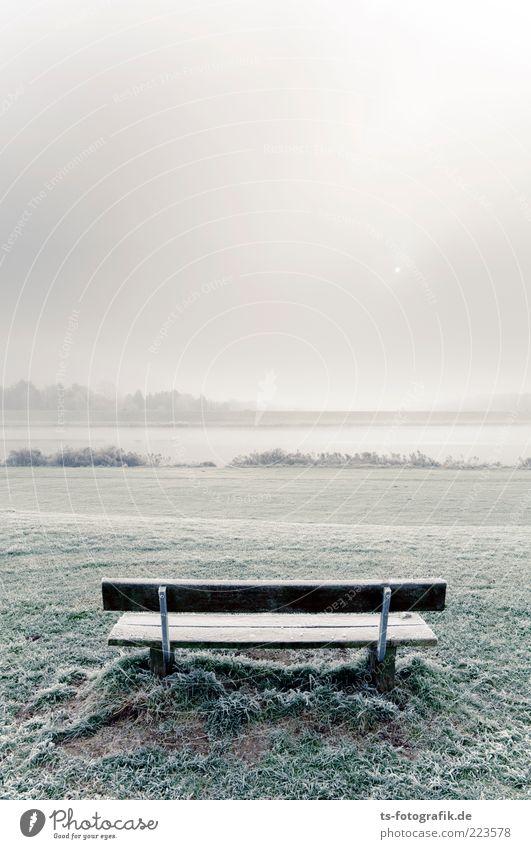 Kalter Hintern? Umwelt Natur Landschaft Urelemente Luft Horizont Sonne Winter Nebel Eis Frost Schnee Gras Park Wiese Hügel Seeufer Flussufer kalt Bank Holzbank