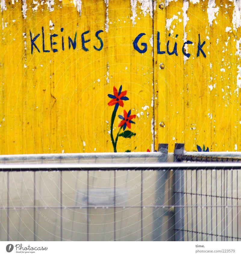 Home Is Where The Heart Is Blume gelb Farbe Wand Blüte grau Glück Farbstoff klein Zufriedenheit kaputt Buchstaben Metallwaren einfach Kunststoff Gelassenheit
