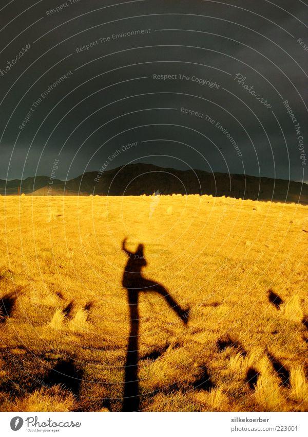 Goldgrau Mensch Himmel Natur blau Ferien & Urlaub & Reisen Sommer Freude Ferne gelb Umwelt Wiese Herbst Landschaft Berge u. Gebirge Freiheit