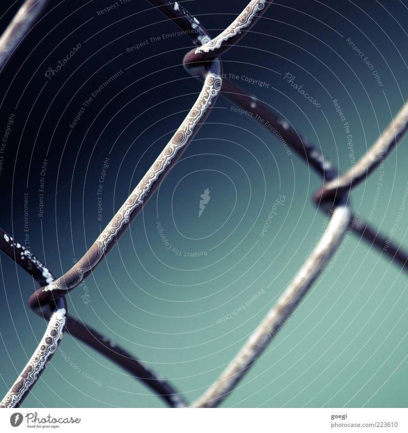 Korrosion Zaun Drahtzaun Maschendrahtzaun Metall alt außergewöhnlich kaputt blau grau schwarz weiß Rost verwittert Farbfoto Detailaufnahme Menschenleer