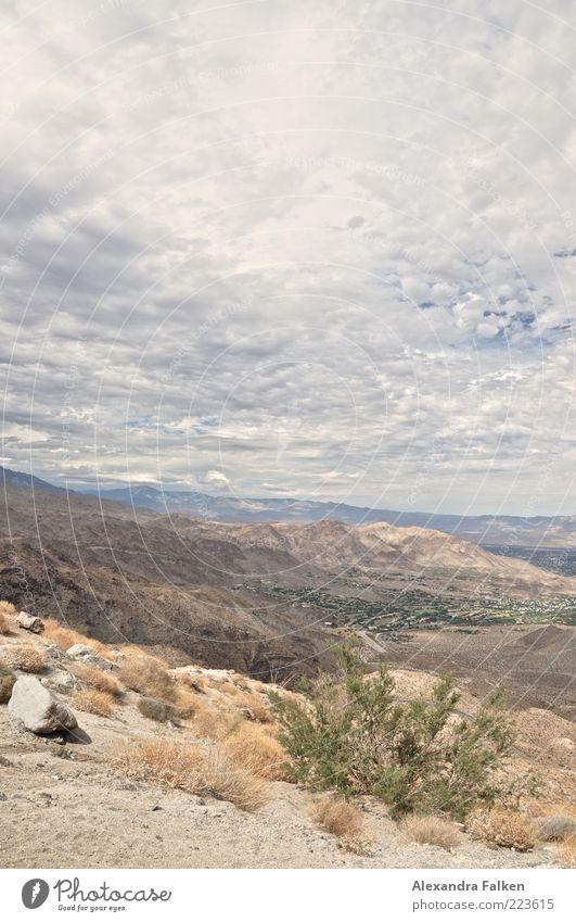 Landschaft Palm Springs Himmel Natur Pflanze Sommer Wolken Ferne Berge u. Gebirge Umwelt Gras Sand Stein Luft Wetter Erde Horizont