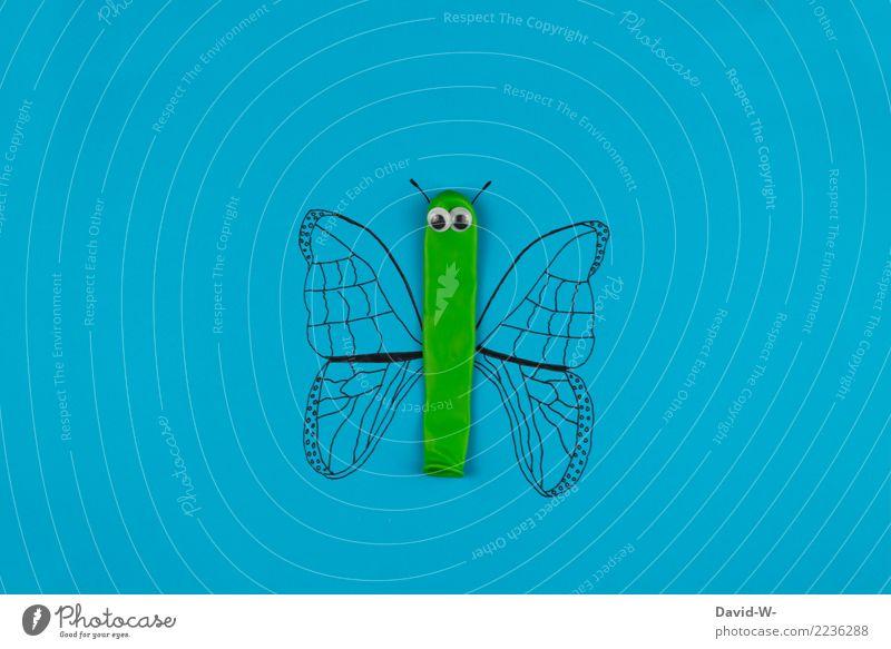 Luftterling Natur Sommer schön Landschaft Tier Umwelt Auge Frühling Stil Kunst fliegen Design elegant Kreativität Kultur Flügel