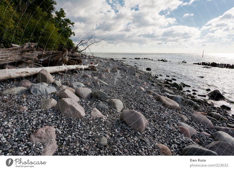Weiße Kiesel Natur Landschaft Wasser Wolken Sommer Schönes Wetter Küste Strand Ostsee Insel Rügen entdecken außergewöhnlich Sauberkeit trist weiß vernünftig