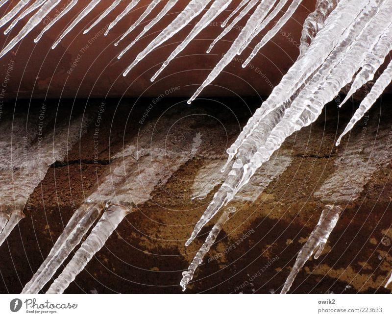 Verschnupfte Dachrinne Wasser Winter schwarz kalt Wand grau Mauer braun Eis nass Fassade Coolness Frost Wandel & Veränderung Tropfen einfach