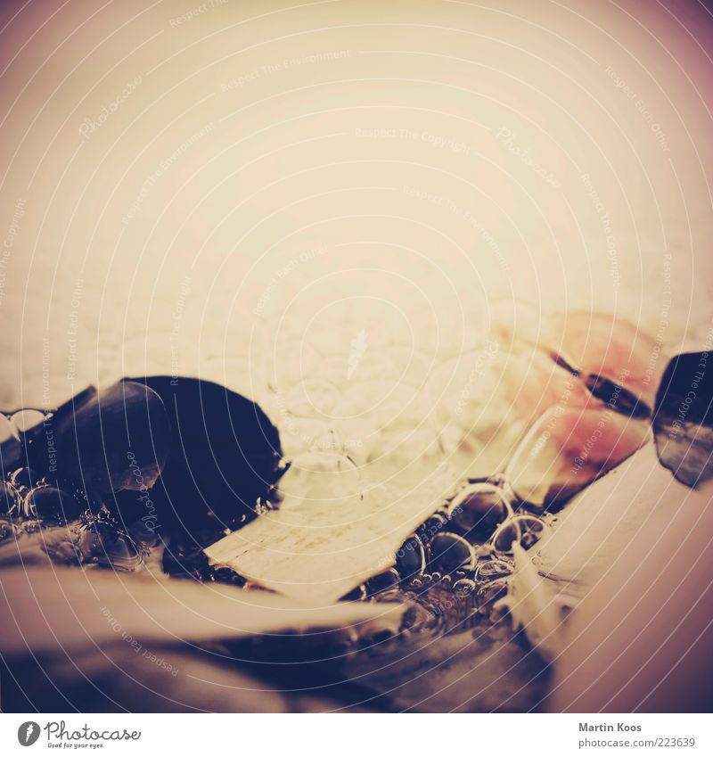 Montagsmiesmuschel Natur Wasser Bewegung träumen Stimmung Küste Wellen Zufriedenheit Zeit Wassertropfen liegen ästhetisch Symbole & Metaphern Momentaufnahme Muschel Nostalgie