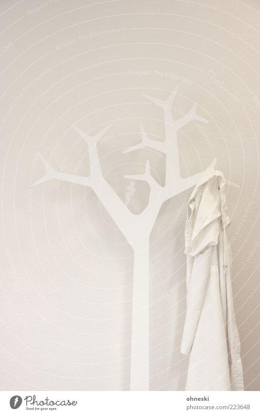Weiß weiß Baum Raum Design Ordnung Bekleidung trist Dekoration & Verzierung Innenarchitektur Spitze Jacke Mantel Farblosigkeit Möbel Kleiderständer