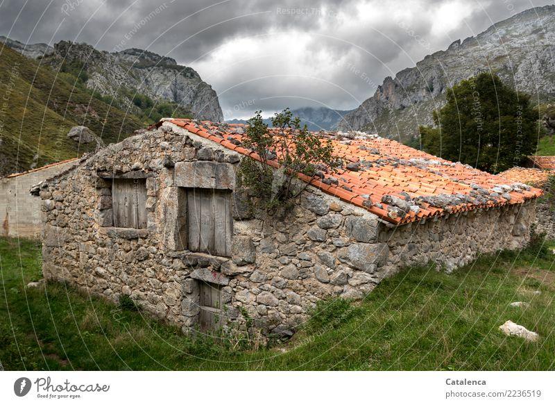 Stall Berge u. Gebirge wandern Landschaft Pflanze Gewitterwolken Sommer schlechtes Wetter Baum Gras Wiese Hügel Felsen Hütte Bauwerk Kuhstall Stein Holz alt