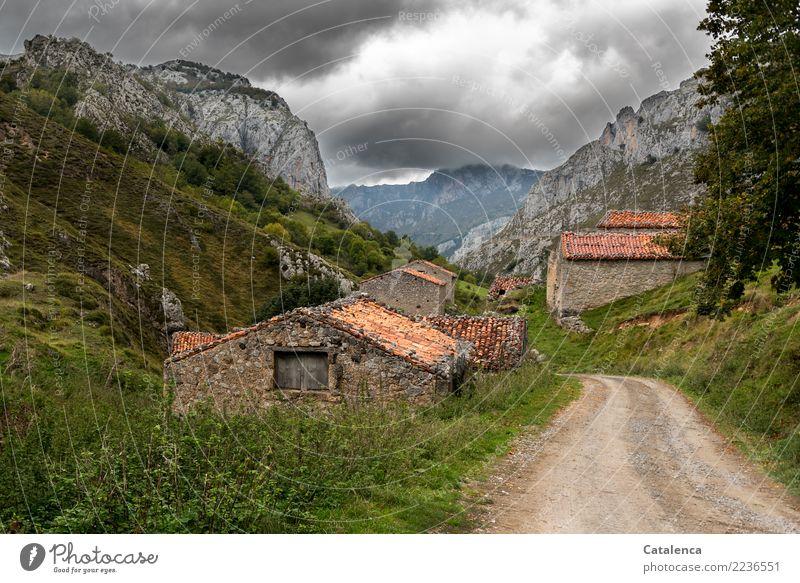 Erdweg, umsäumt von Steinhütten Landschaft Gewitterwolken Sommer schlechtes Wetter Baum Gras Sträucher Wiese Berge u. Gebirge Haus Hütte Straße Wege & Pfade