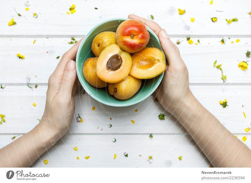 Weibliche Hände, die eine Schüssel Aprikosen halten Lebensmittel Frucht Süßwaren Ernährung Essen Frühstück Mittagessen Abendessen Picknick Bioprodukte Diät