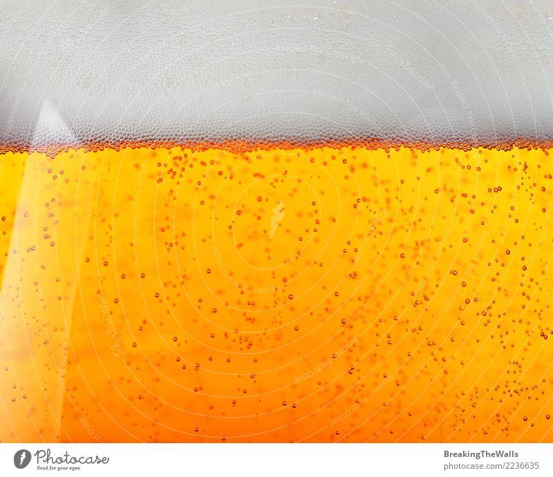 Extrem nah oben vom Bier im Glas, Seitenansicht Getränk Erfrischungsgetränk Alkohol gelb gold weiß Pils Bierschaum Luftblase niedriger Winkel Profil