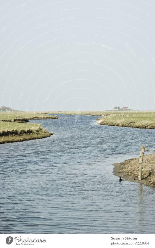 Hooge Wasser Einsamkeit Ferne Landschaft klein Küste Wellen Insel Hügel Nordsee Flussufer Moos Wolkenloser Himmel Buhne Wohnsiedlung Nordseeküste