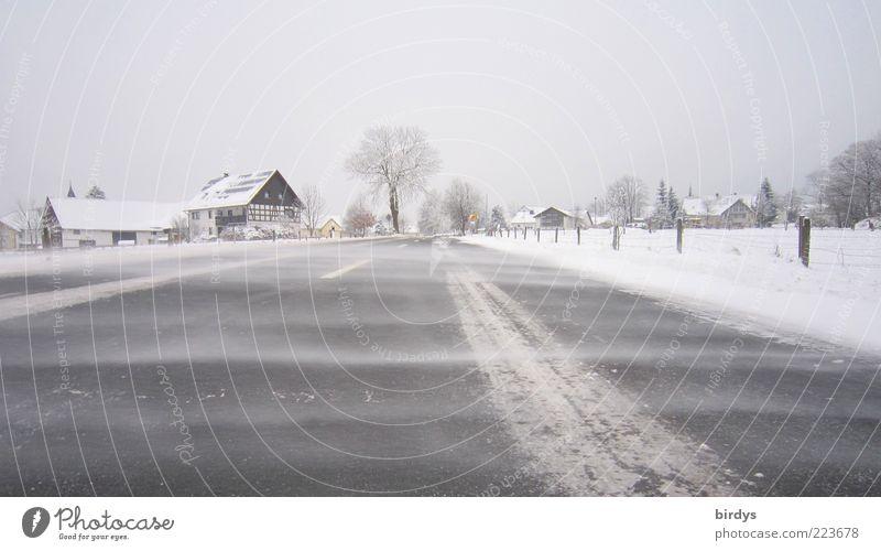 Eisiger Wind Winter Wetter Sturm Frost Schnee Dorf Menschenleer Verkehrswege Straße frieren authentisch kalt natürlich bedrohlich Klima Sicherheit Naturgewalt