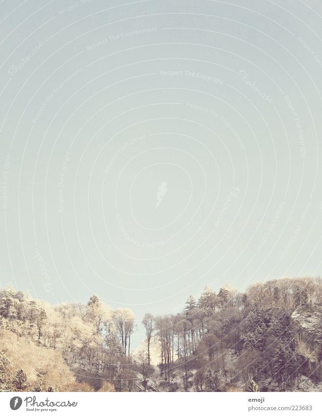 Berg dahinter Himmel Baum blau Wald Berge u. Gebirge Hügel Schönes Wetter eckig Wolkenloser Himmel
