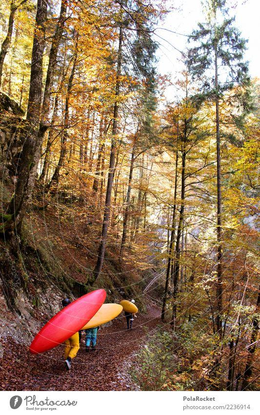 #S# Kajak Wandern Wassersport wandern Natur Wald Herbst Sport Extremsport Blatt Paddeln Leidenschaft Vorfreude anstrengen gelb rot Farbfoto Außenaufnahme Tag