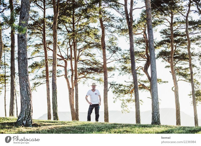Der Mann mit Hut zwischen Bäumen Lifestyle harmonisch Wohlgefühl Zufriedenheit Erholung ruhig Freizeit & Hobby Ausflug Freiheit Mensch maskulin