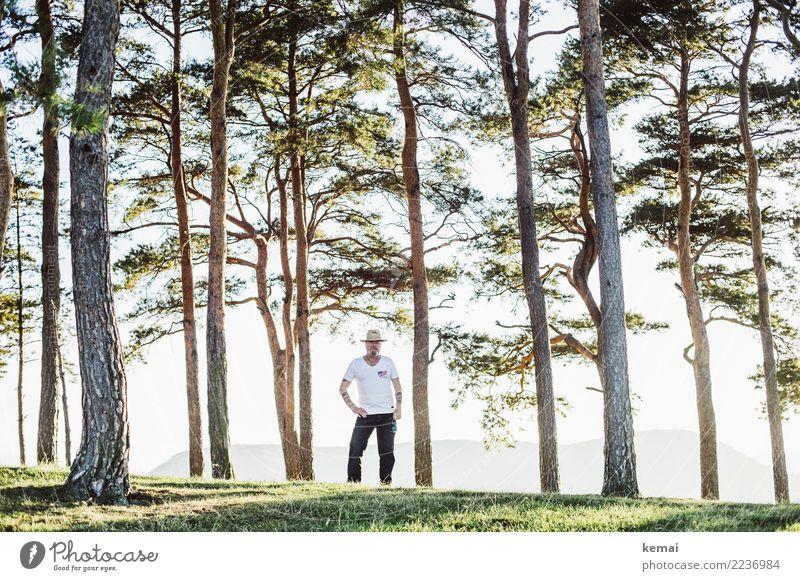 Der Mann mit Hut zwischen Bäumen Mensch Natur Sommer Landschaft Baum Erholung ruhig Erwachsene Leben Lifestyle Senior Freiheit Ausflug Freizeit & Hobby