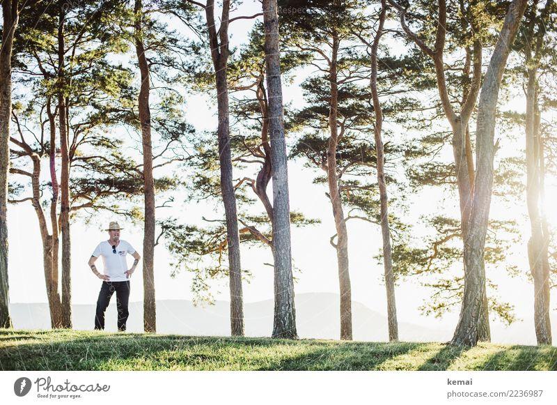 Der Mann mit dem Hut Mensch Natur Sommer Baum Erholung ruhig Erwachsene Leben Lifestyle Senior Stil Freiheit Ausflug Freizeit & Hobby Zufriedenheit