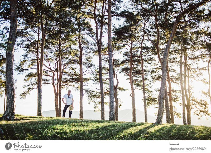 Der Mann hält den Hut und die Sonne scheint Mensch Natur Sommer Baum Erholung ruhig Erwachsene Wärme Leben Lifestyle Senior Stil Gras Freiheit Ausflug