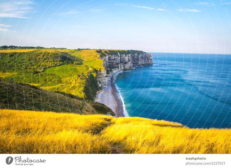 Étretat Natur Ferien & Urlaub & Reisen Pflanze blau Landschaft Meer Ferne Strand Wiese Küste Tourismus Freiheit Ausflug wandern Feld Wellen