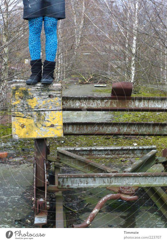 kopflos Mensch Jugendliche blau Erwachsene Holz Stil Beine Metall wild ästhetisch verrückt stehen 18-30 Jahre Asphalt Junge Frau Fabrik