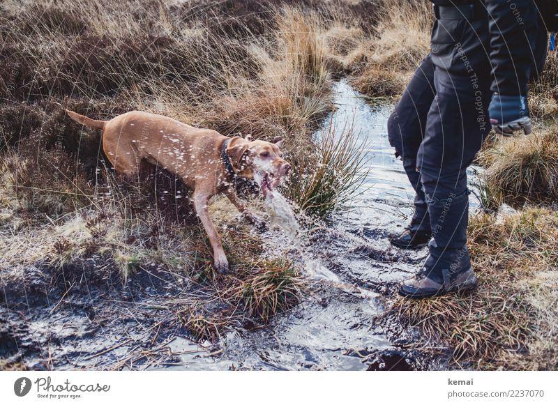 Spass im Moor Lifestyle Leben Wohlgefühl Zufriedenheit Freizeit & Hobby Spielen Ausflug Freiheit wandern Mensch Beine 1 Natur Pflanze Urelemente Wasser