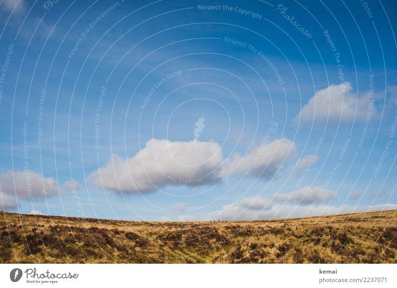 Toller Himmel über dem Moor und der Wandergruppe Mensch Ferien & Urlaub & Reisen Natur Sommer blau Landschaft Wolken ruhig Ferne Lifestyle Leben natürlich