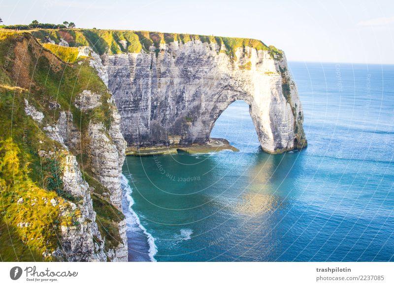 Etretat Umwelt Natur Landschaft Wasser Sommer Schönes Wetter Nordsee Étretat Frankreich Europa Ferien & Urlaub & Reisen Felsen Klippe Freiheit Farbfoto