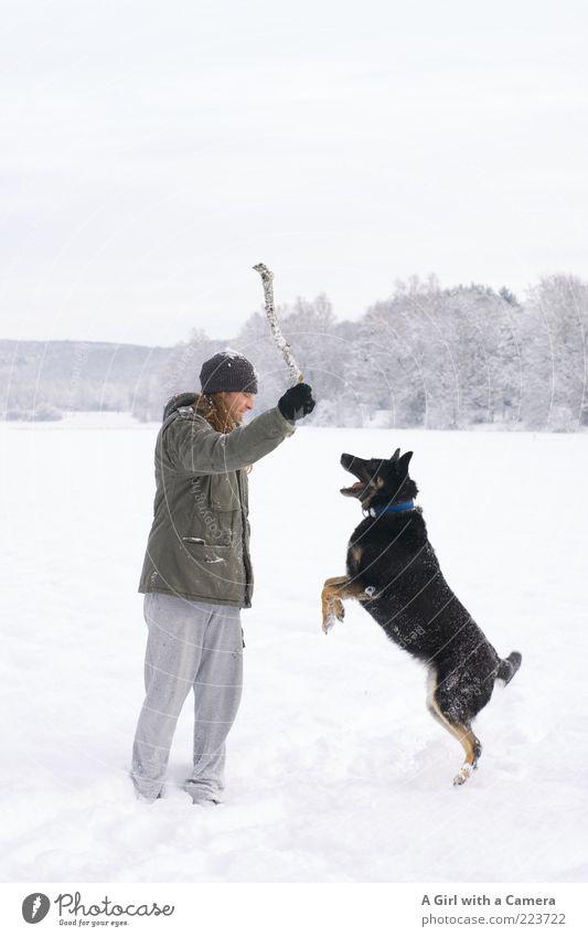 klonk! maskulin Mann Erwachsene 1 Mensch 30-45 Jahre Umwelt Natur Landschaft Winter Schnee Wiese Tier Haustier Hund Spielen springen toben werfen schwarz weiß