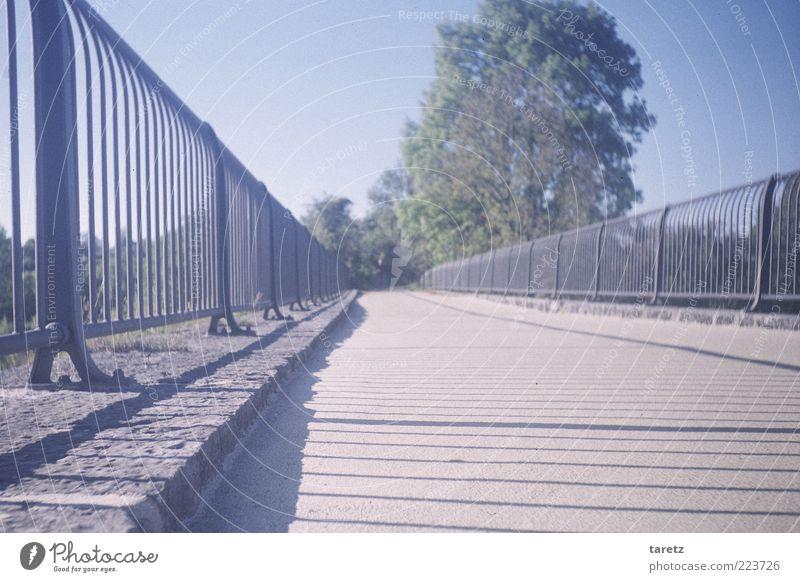 Auf in's Ungewisse! Baum Wege & Pfade Brücke Ziel vorwärts Geländer Schönes Wetter führen Fernweh Erwartung Brückengeländer Blauer Himmel Fortschritt Sonne Wolkenloser Himmel zielstrebig