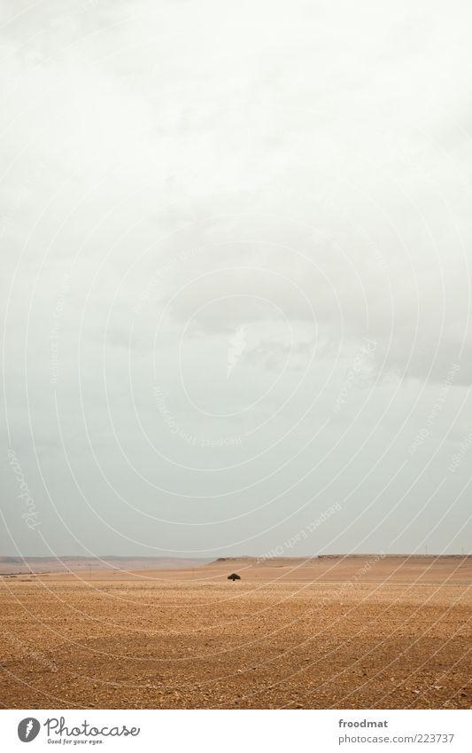 solitude Umwelt Natur Landschaft Himmel Wolken schlechtes Wetter Dürre Wüste Unendlichkeit einzigartig trist trocken ruhig Einsamkeit Endzeitstimmung Marokko