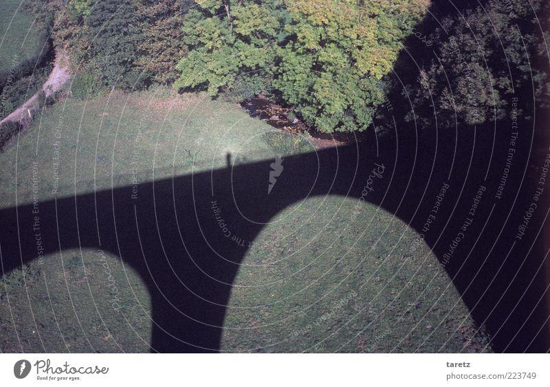 Der zweite Versuch Baum ruhig Einsamkeit Wiese Herbst Denken hoch Brücke Pause Gelassenheit Aussicht Dynamik Schönes Wetter Bogen Tal