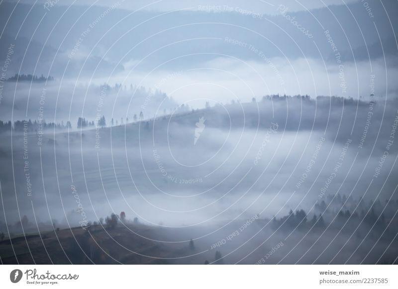 Herbstregen und -nebel in den Bergen. Morgennebel über Hügel Natur Ferien & Urlaub & Reisen blau Sommer Landschaft Baum Wolken Ferne Wald Berge u. Gebirge