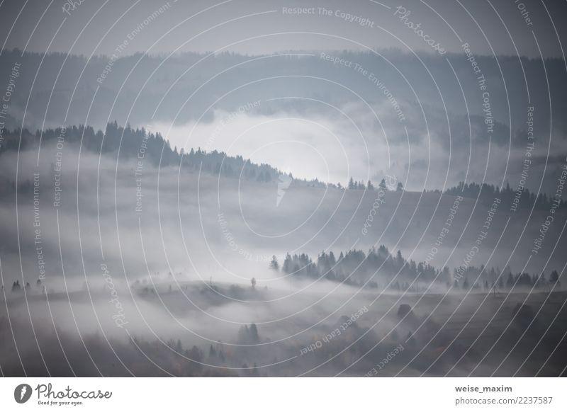 Herbstregen und -nebel in den Bergen. Morgennebel über Hügel Himmel Natur Ferien & Urlaub & Reisen blau Sommer Landschaft Baum Wolken Ferne Wald