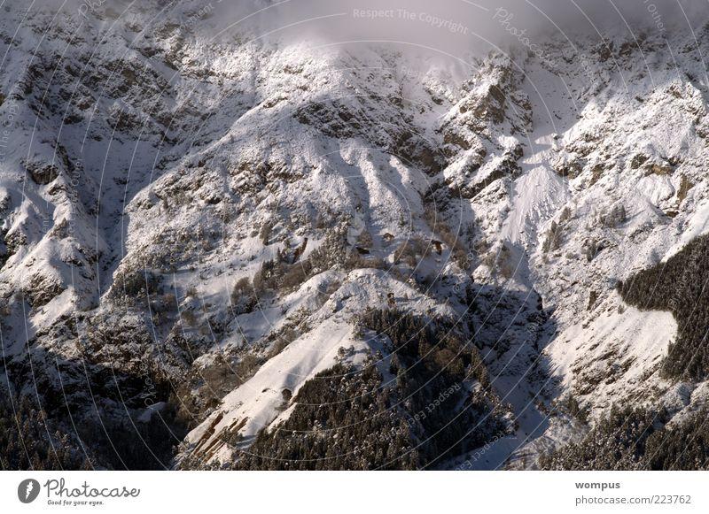 Morgennebel im Hochgebirge Natur Schnee Berge u. Gebirge Landschaft Umwelt Nebel Felsen Alpen Schönes Wetter Berghang Textfreiraum Steilwand