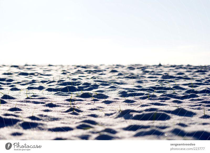 Snowy horizont Himmel Natur Pflanze Einsamkeit ruhig Landschaft Winter kalt Umwelt Schnee Gras Stimmung Eis Klima Schönes Wetter Frost