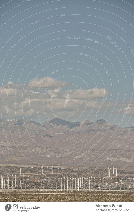 Landschaft Palm Springs IV Fortschritt Zukunft Energiewirtschaft Erneuerbare Energie Windkraftanlage Umwelt Natur Urelemente Erde Luft Himmel Wolken Sonnenlicht