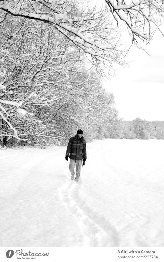 someone exactly like you Mensch maskulin Junger Mann Jugendliche Erwachsene 1 Winter Eis Frost Schnee Baum Wald Hose Jacke Handschuhe Mütze langhaarig Glück