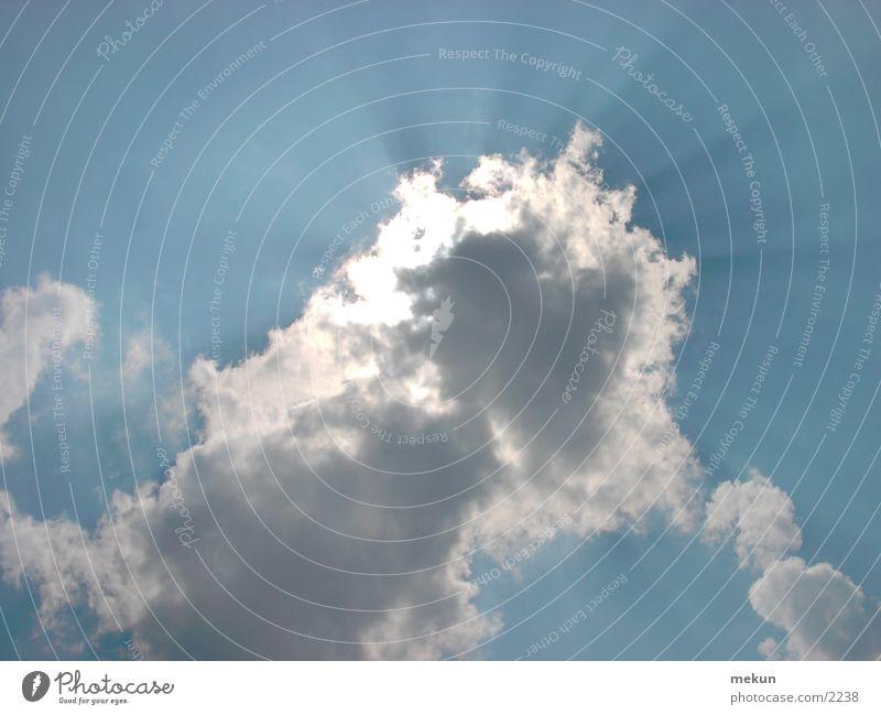 Durch die Wolken Himmel weiß Sonne blau Vogel