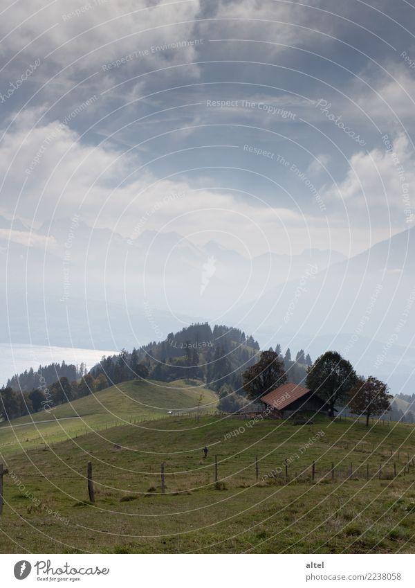 Berner Oberland #1 Mensch Kind Kindheit Natur Landschaft Tier Wolken Horizont Herbst Wiese Alpen Berge u. Gebirge Schweiz Hütte Erholung wandern Stimmung Glück