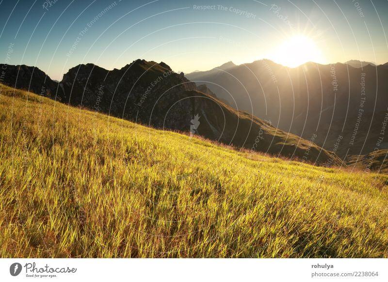 Morgen Sonnenschein über hohe Almwiese im Sommer Ferien & Urlaub & Reisen Berge u. Gebirge wandern Natur Landschaft Sonnenaufgang Sonnenuntergang Schönes Wetter
