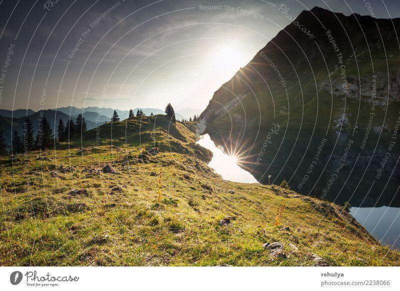 Sonnenuntergang über Alpensee und Berggipfeln, Deutschland Berge u. Gebirge Natur Landschaft Himmel Sonnenaufgang Sommer Schönes Wetter Baum Wiese Hügel Felsen