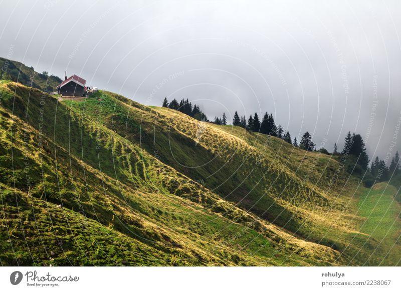 Sonnenlicht auf Almen und alte Hütte, Deutschland Ferien & Urlaub & Reisen Sommer Berge u. Gebirge wandern Haus Natur Landschaft Wetter Nebel Gras Wiese Hügel
