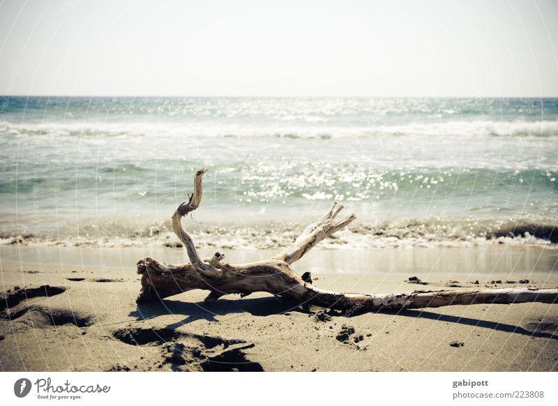 Traumstrand Natur Sommer Ferien & Urlaub & Reisen Meer Strand Einsamkeit Freiheit Küste hell Wellen Horizont liegen groß Perspektive einzigartig Ast