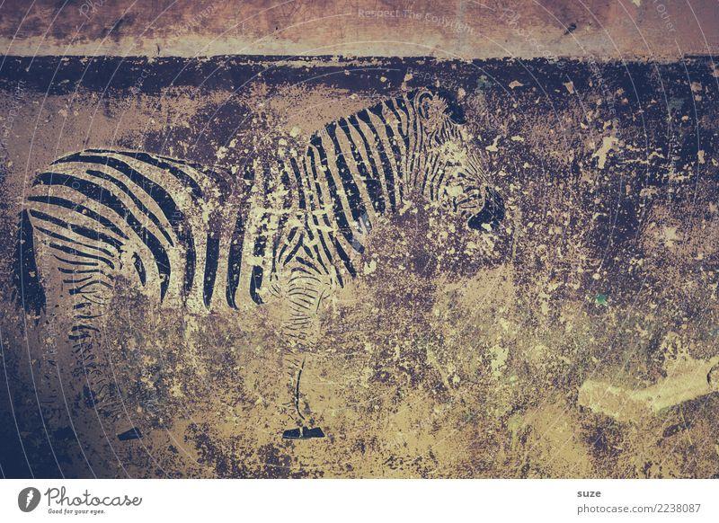 Das Dahinvegetier Stil exotisch Freiheit Safari Kunst Kunstwerk Kultur Mauer Wand Fassade Wildtier 1 Tier Graffiti Streifen alt Armut dreckig kaputt wild grau