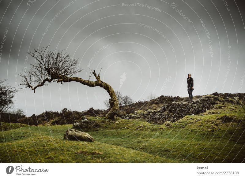 Ein Baum und ein Mensch Himmel Natur Ferien & Urlaub & Reisen Landschaft Erholung Einsamkeit Wolken ruhig Erwachsene Leben Lifestyle Umwelt feminin Gras