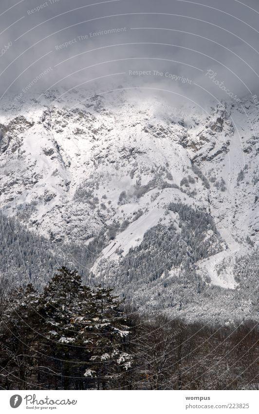 Blick aus meinem Küchenfenster Umwelt Natur Landschaft Nebel Hügel Felsen Alpen Berge u. Gebirge braun grau weiß Farbfoto Außenaufnahme Tag Panorama (Aussicht)