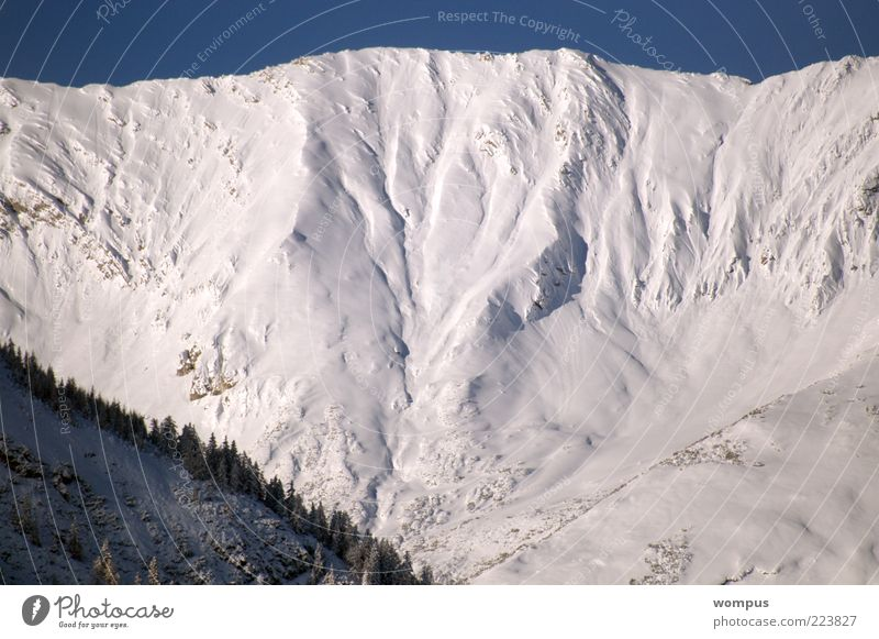 Extreme Lawinengefahr Natur Ferien & Urlaub & Reisen Schnee Berge u. Gebirge Landschaft Umwelt Wetter Felsen groß Tourismus Alpen Gipfel Schneelandschaft Schönes Wetter Klima gigantisch